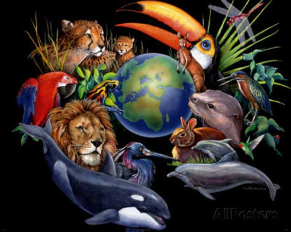 living-earth-peter-kull-600x479